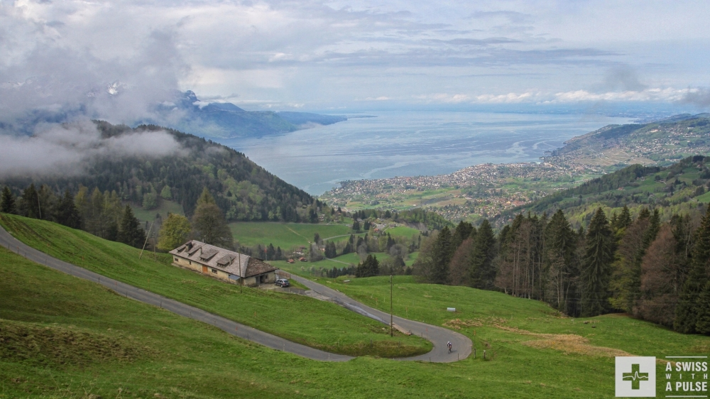 The view from Orgevaux on Vevey and the Lavaux vineyards